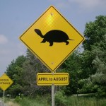 turtle_crossing_sign