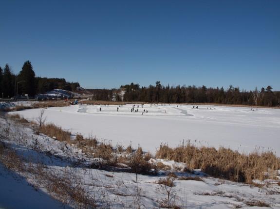 Skating and Hockey in Palgrave, Ontario
