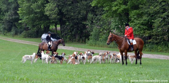 Mock Hunt in Caledon #1